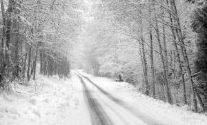 Road Home © Al McMillan