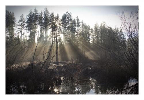Late Rays © Art Jurisson