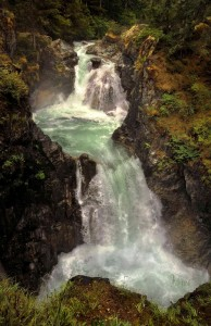 Qualicum Falls © Bob Belhouse