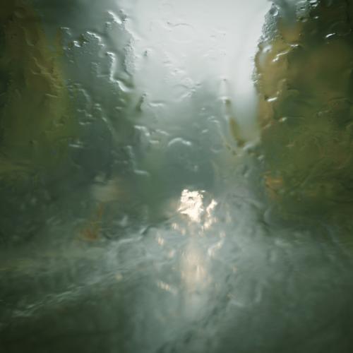 Malahat Drive Rain © Bill Brown