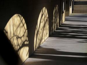 Golden Arches © Bob Belhouse