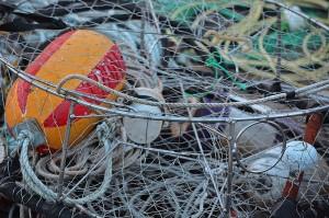 Crab Fishing Time © Lindsey Woods