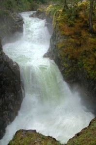 Little Qualicum Falls  © Pat Haugen