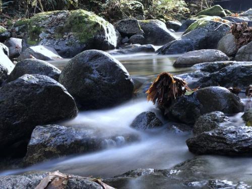 Holland Creek Falls © Ron McBride