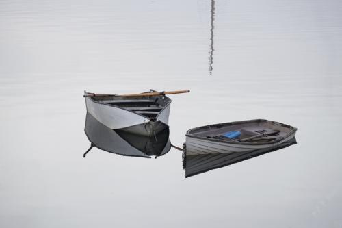 Reflections © Sue Williams