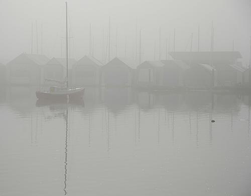 Foggy Ladysmith Harbour © Charlie Schaal