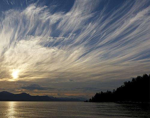 Sky Feathers © Patricia Haugen