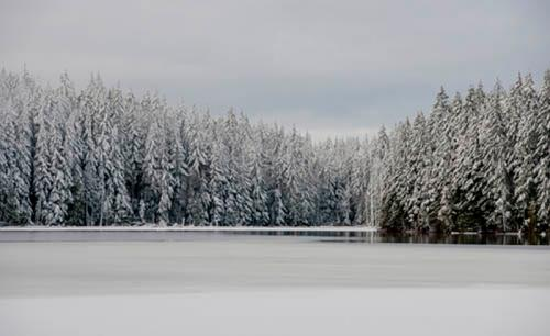Winter Solitude, Stocking Lake © Rich Loewen