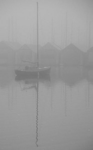 Foggy Morning, Ladysmith Harbour © Charlie Schaal