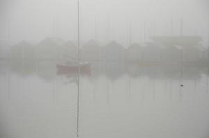 Ladysmith Harbour Fog © Charlie Schaal