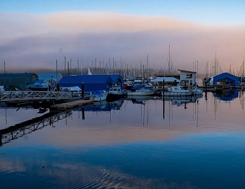 Ladysmith Marina © Sue Williams
