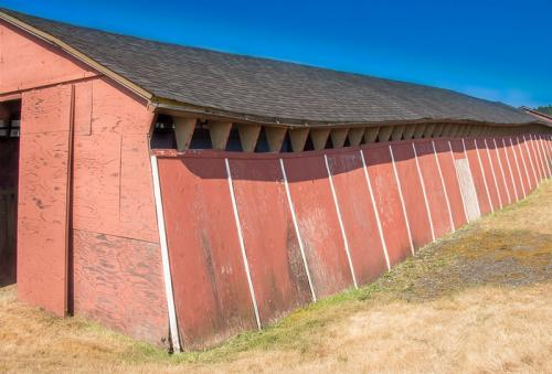 Old Fair Grounds Barn © Betty Todd