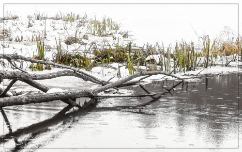 SOOC Snow and Rain 2 © Pat Haugen