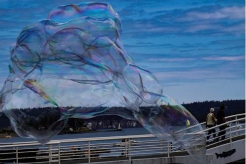 Bubble © Sue Williams