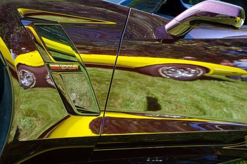 Corvette in a Corvette © Charlie Schaal