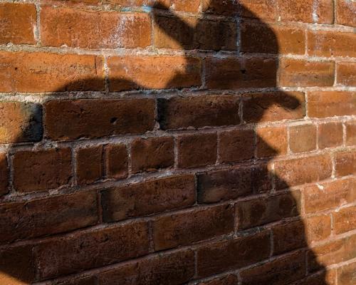 The Shadow © Al McMillan