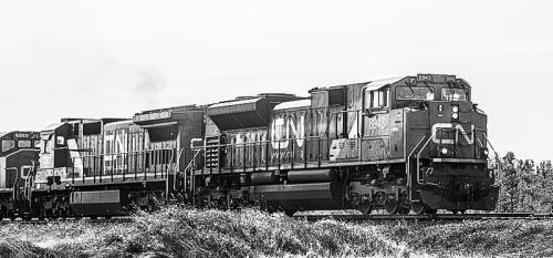 Freight Train © Betty Todd