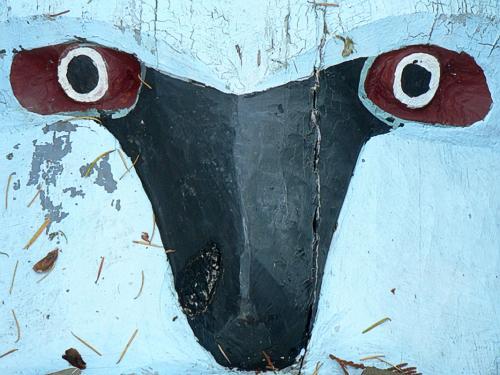 SOOC 2 - Fallen Totem Bowen Park © Michele Hillier
